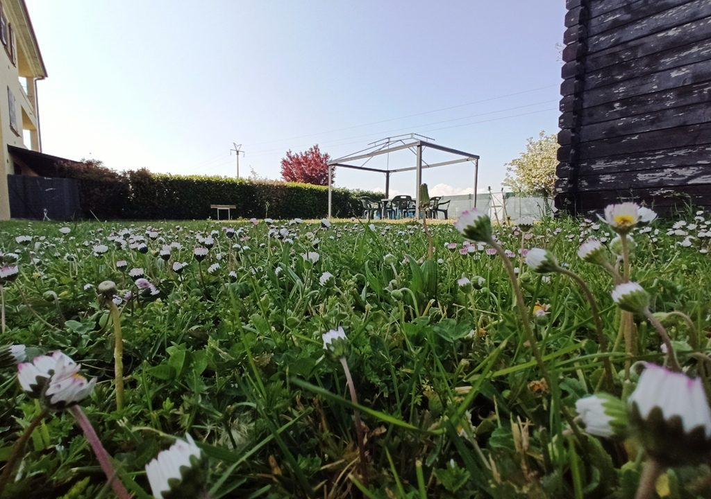 giardino trilocale recente Rivarolo